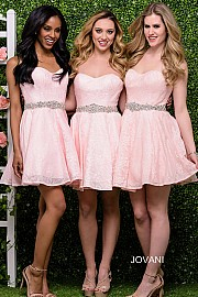 Pink Fit and Flare Short Bridesmaid Dress JVN41423