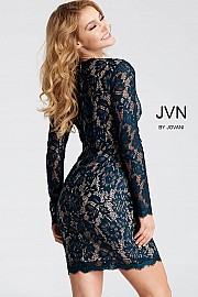 Peacock V Neck Fitted Lace Dress JVN42635