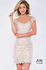 Ivory Nude Lace Cap Sleeve Short Dress JVN28104
