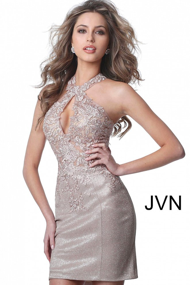 JVN2207 Nude Embroidered Bodice Key Hole Neck Short Dress