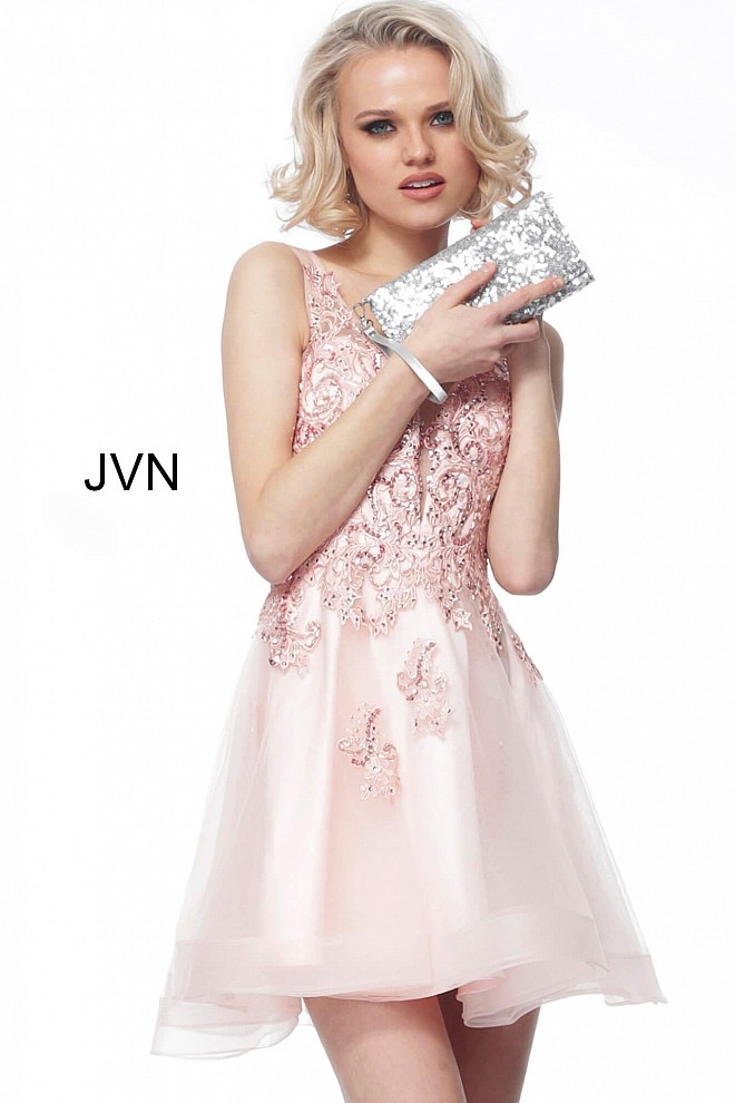 Blush Embroidered Fit and Flare Cocktail Dress JVN66550
